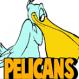 Pelicano13